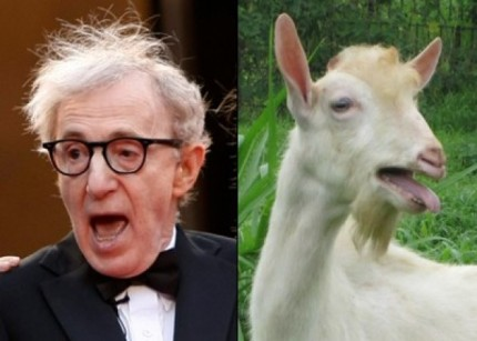 celebrities-who-look-like-animals-1-600x429