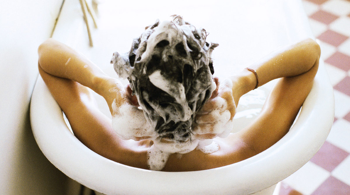 schamponera haret
