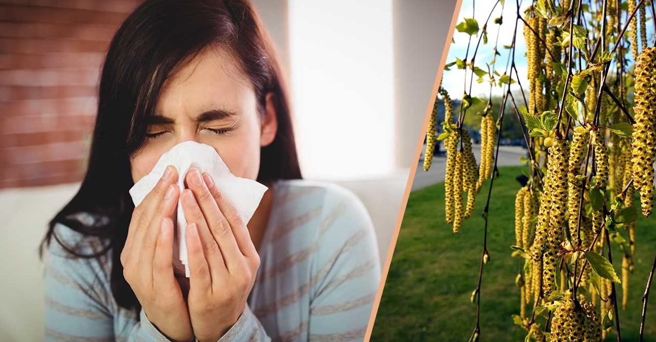 pollen eller förkylning