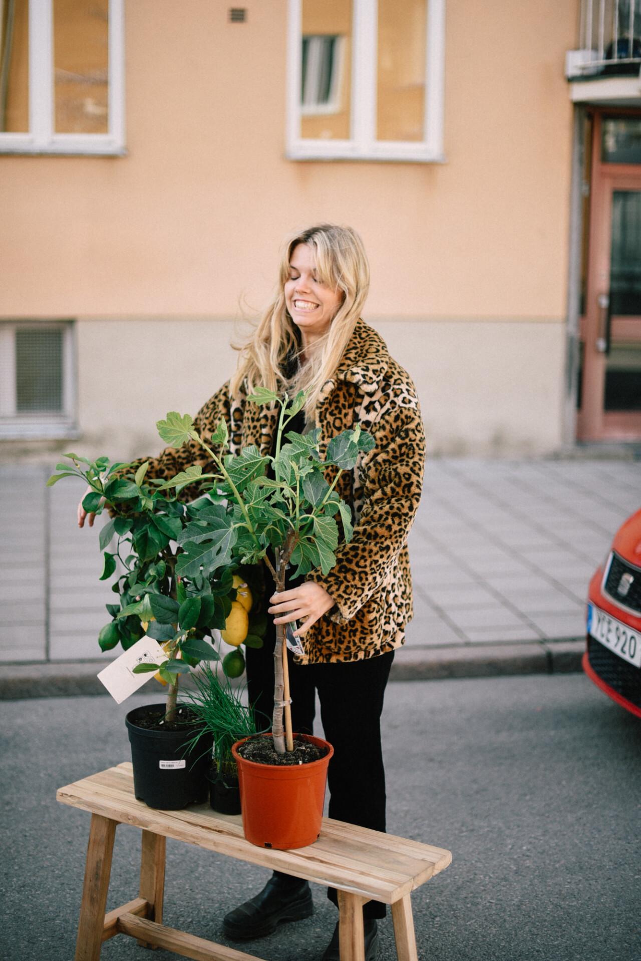 Min tisdag från morgon till kväll –köpa växter och kalla killar för män