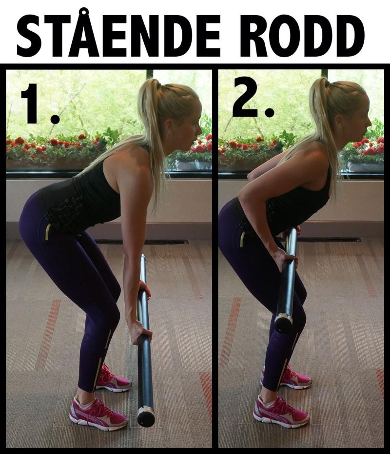 träna upp ryggen