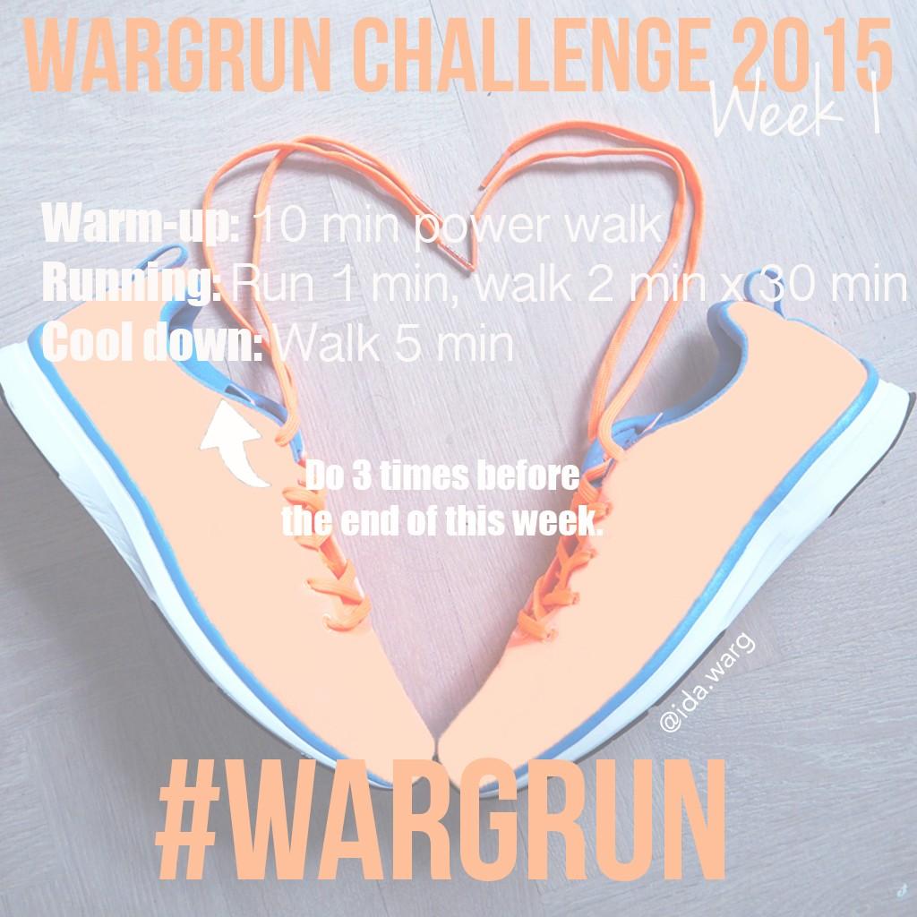 wargrun-week-1-ida-warg