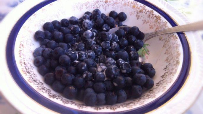 nyttigt med blåbär